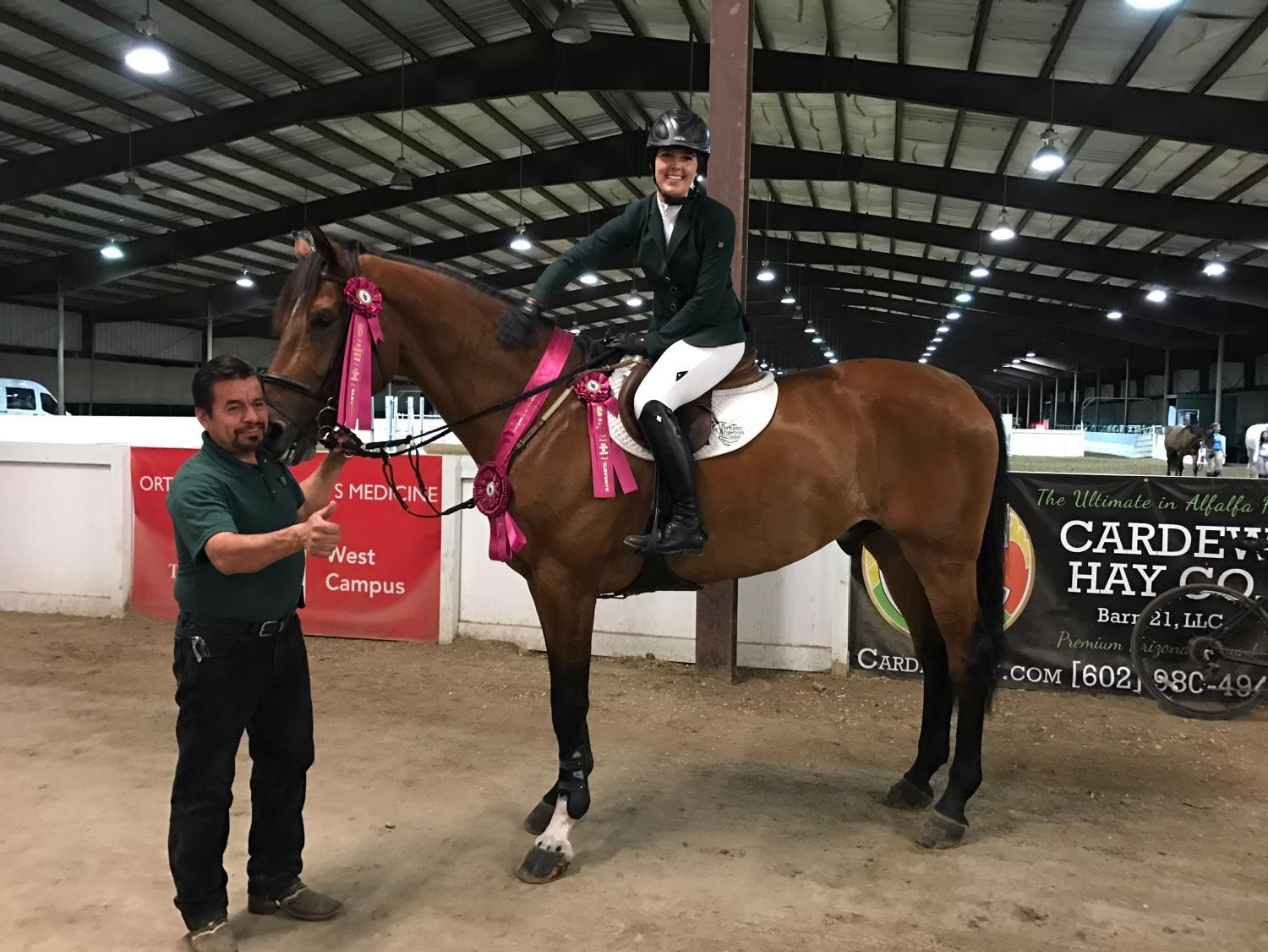 Dressage Amp Para Dressage Horse Riding Lessons In Dallas