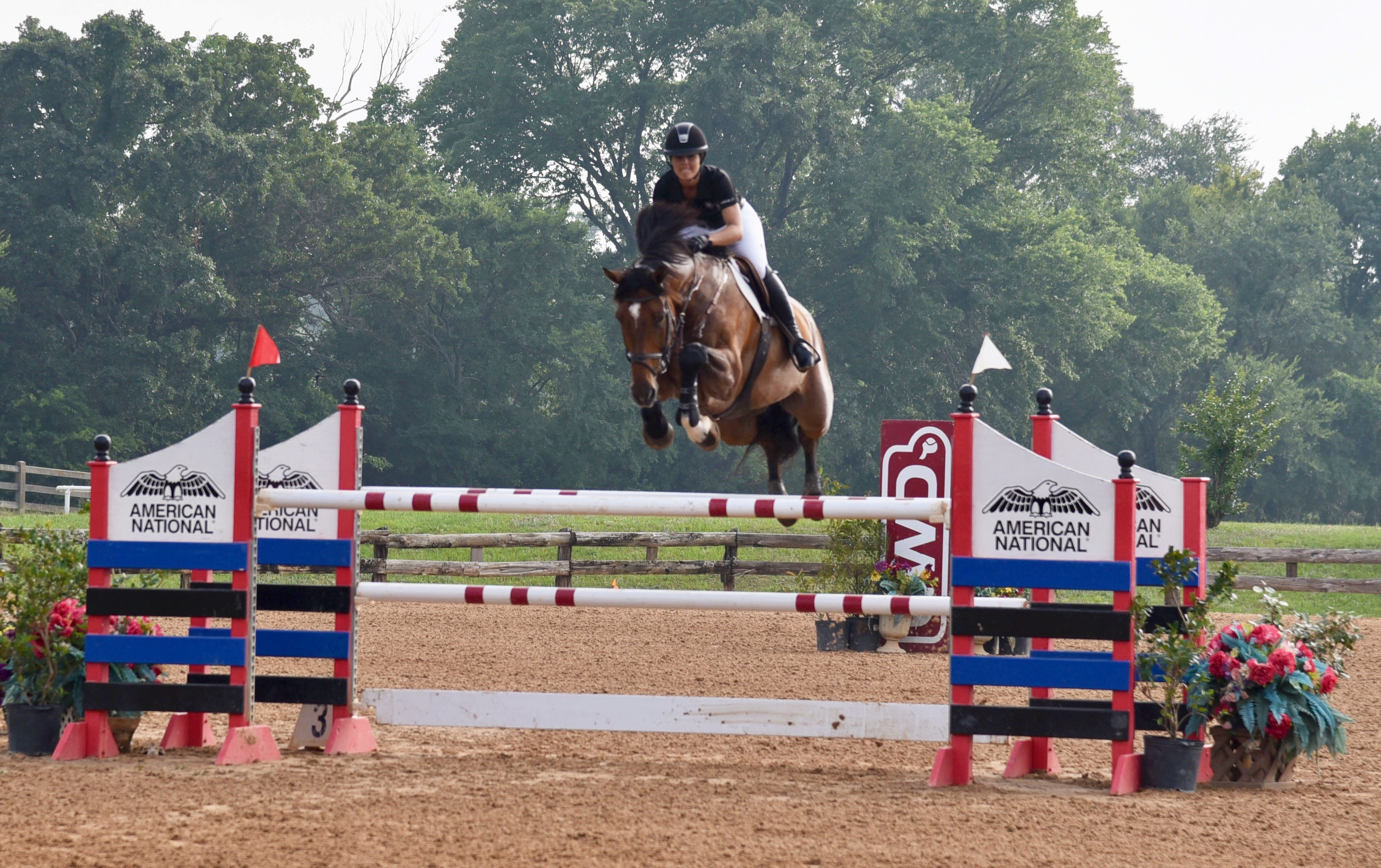 Awards And Events North Texas Equestrian Center Inc