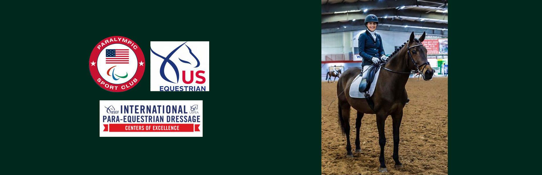 North Texas Equestrian Center Inc Warmblood Horse