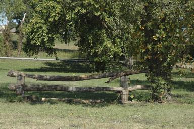 North Texas Equestrian Facilities North Texas Equestrian